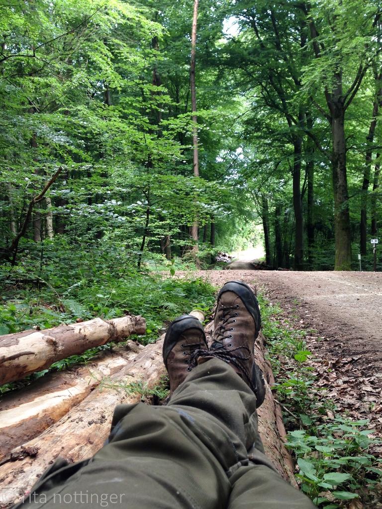 Kleine Pause im Meulenwald