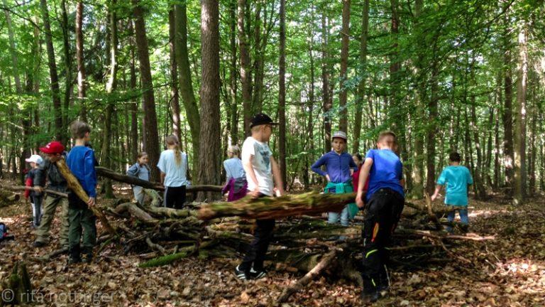praktisches Lernen im Wald